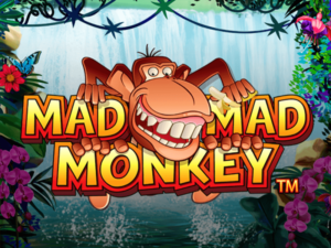 Mad Monkeys